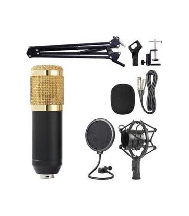 kit-microfonia-f-zone-bm-800 (1)